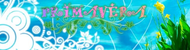 banner privamera