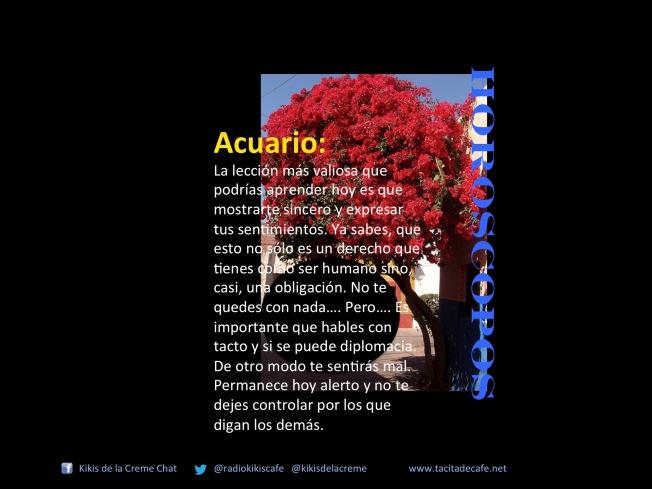 Acuario 21