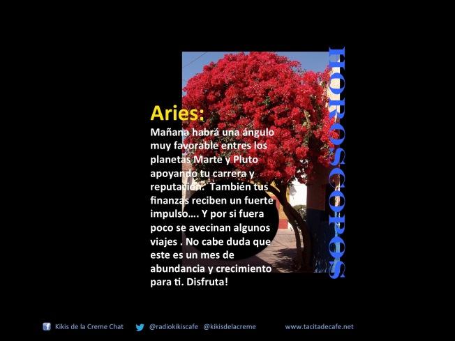 Aries 21