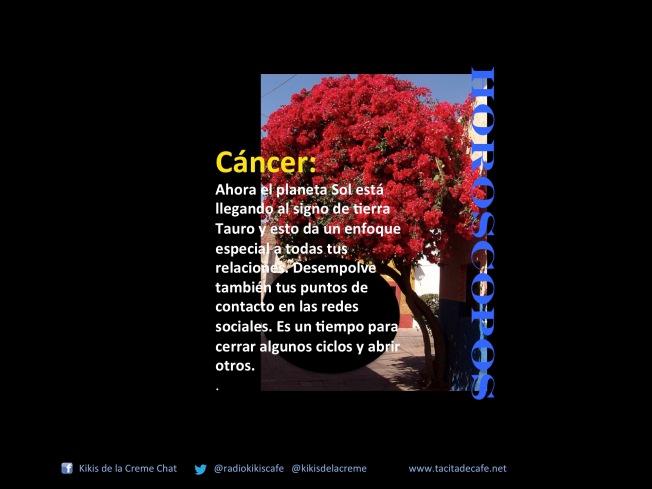 Cancer 21