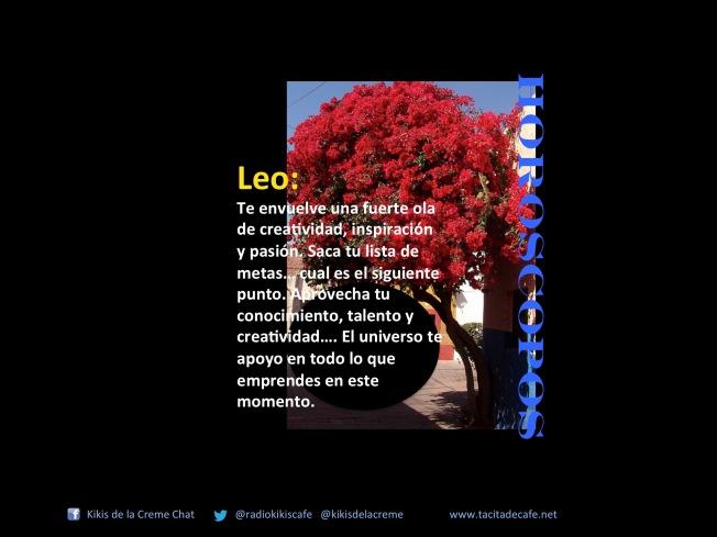 Leo 21