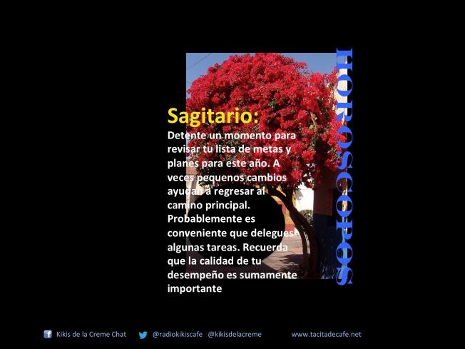 Sage 21