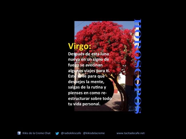 VIrgo 21